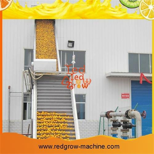 Engineering Plastic Scraper Lifting Conveyor Machine for Fruit and Vegetable