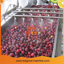 Peach Apricot Plum Fruit Processing Machine