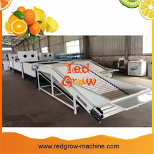 Citrus Waxing Machine for Orange Citrus Apple and Other Fruits