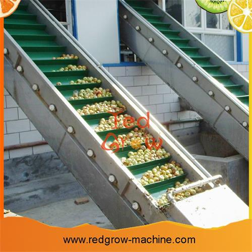 Apple Puree Processing Machine