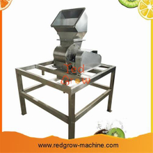 Kiwi Fruit Processing Machine