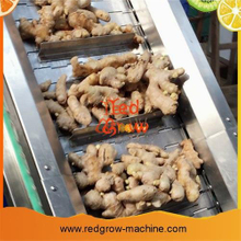 Ginger Brush Washer Machine