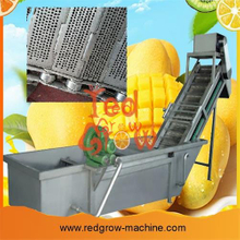 Mango Processing Machine